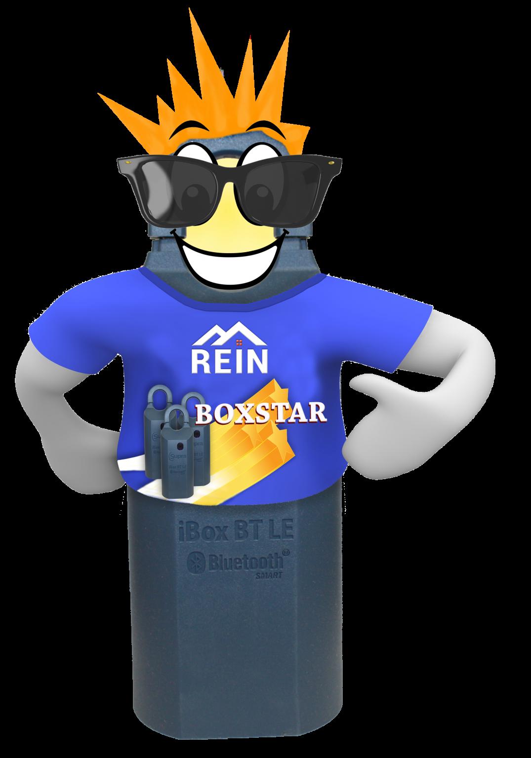 REIN Keybox Rockstar
