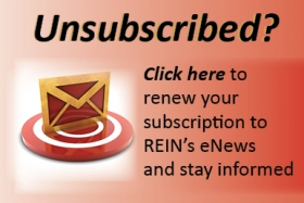 re-subscribe to emails from rein, inc button